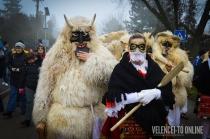 karneval_1-7803