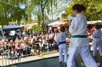 Karate bemutató