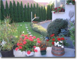 Fischer Attila, Parképítés, kertépítés, parkfenntartás, öntözőrendszerek, kerti tavak, Székesfehérvár