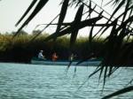 Takarító kenutúra a Velencei-tavon @ Velencei-tó