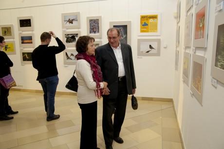 A kiállítás - A háttérben láthatók András képei