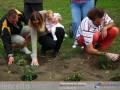Babák rózsakertje ünnepség Velencén