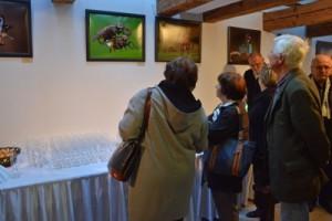 Május végéig látogatható Mészáros András fotókiállítása Agárdon – fotó, videó